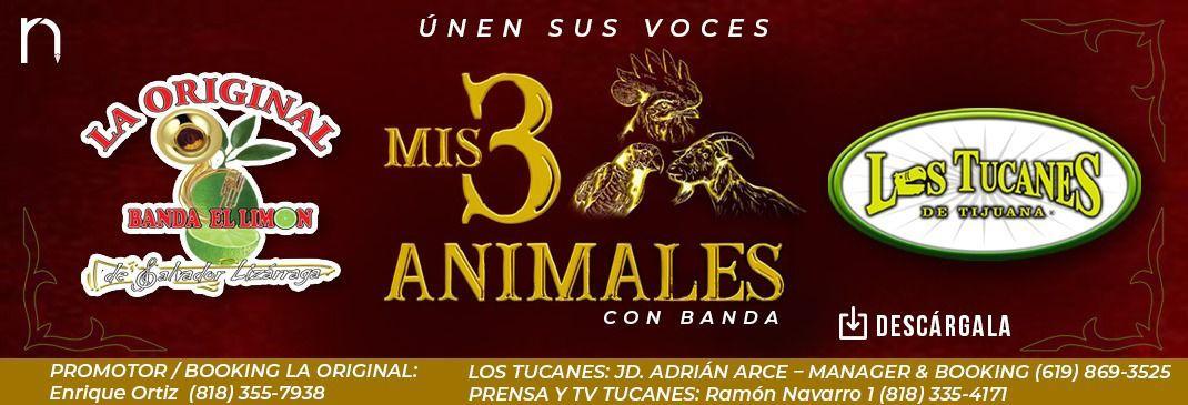 Mis Tres Animales - Lanzamiento Radio
