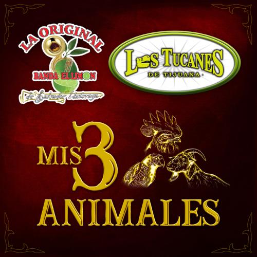 MIS 3 ANIMALES Lanzamiento Plataformas D